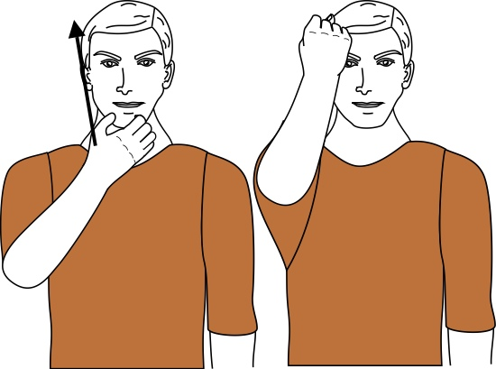 sign language for blasphemy