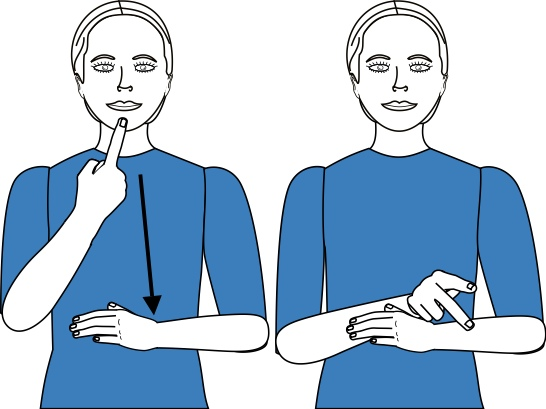 sign language for pledge